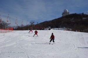 スキー場(初級者用ゲレンデ)