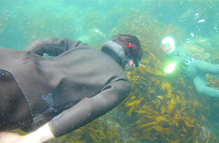 Diving with Ama01.jpg