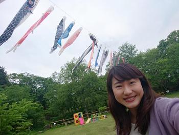 nishiokoinobori2.jpg