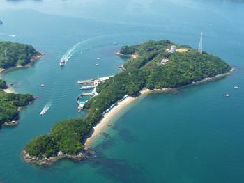 イルカ島.png