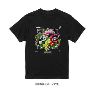 Tシャツ画像FIXb.jpg