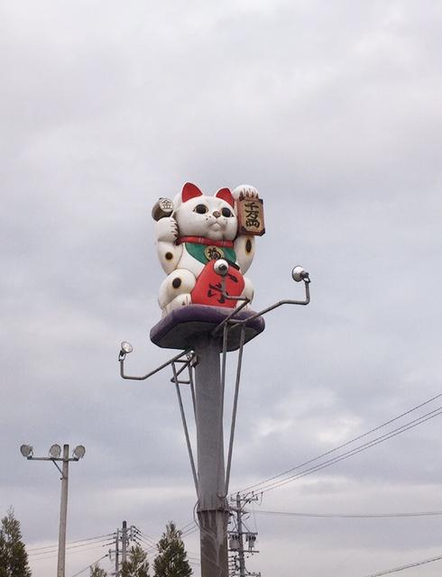 松阪 mgm